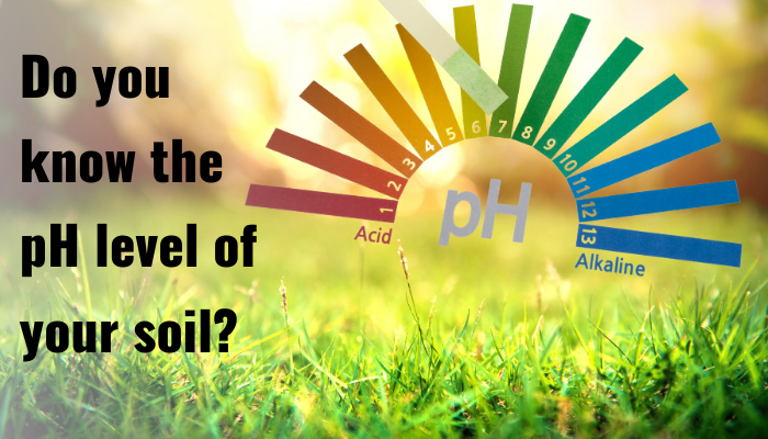 How can knowing the pH level of your soil help with your gardening?