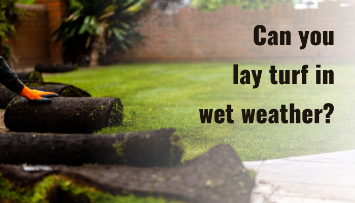 Can you lay turf when the weather and ground are wet?
