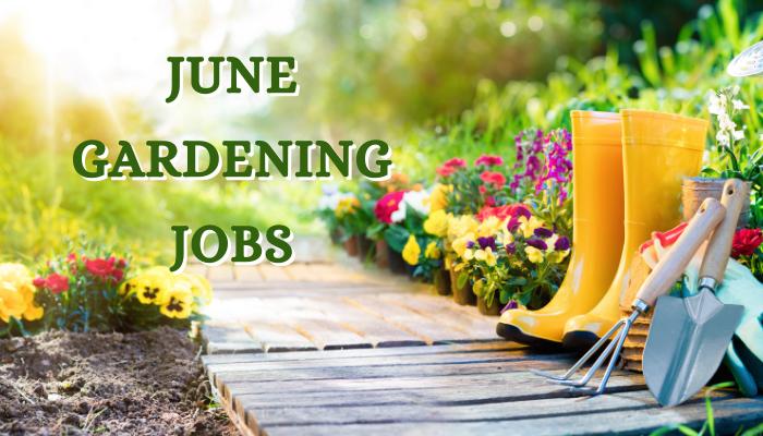 June Gardening Jobs